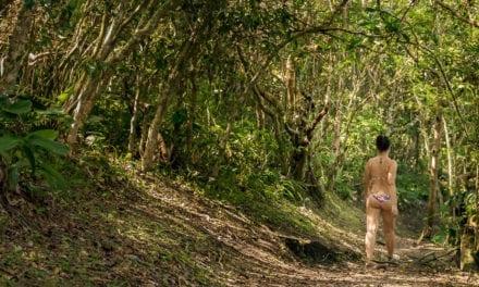 Trilhas a pé: conheça 8 destinos para desconectar os pensamentos