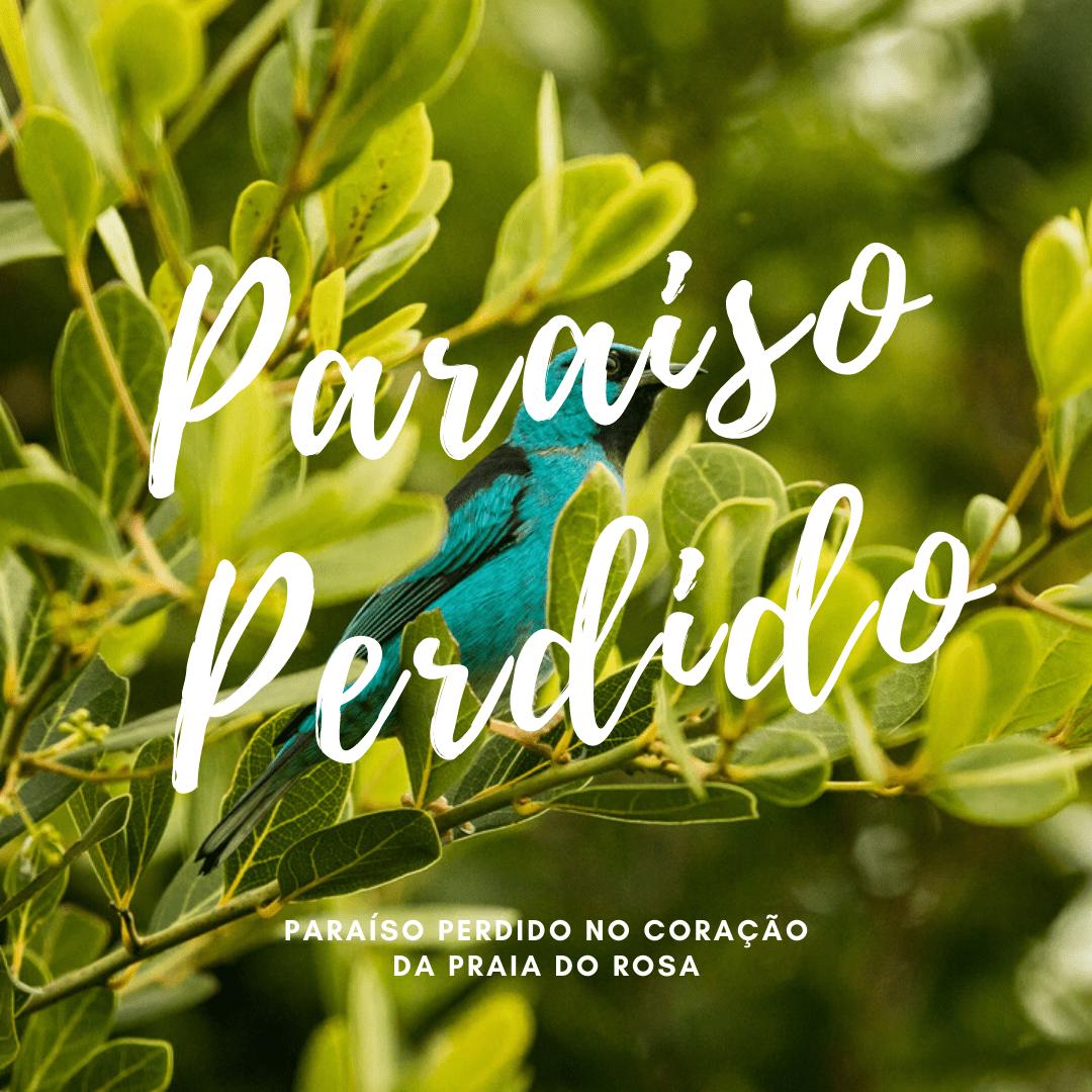 Paraíso-Perdido.png