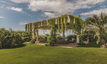 Telhado ecológico: beleza e sustentabilidade para as construções