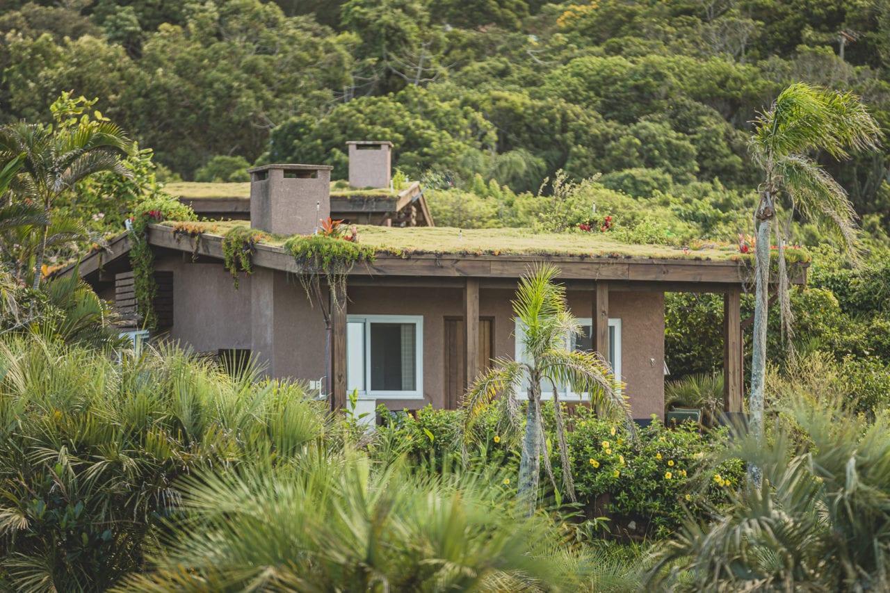 telhado verde telhado ecológico