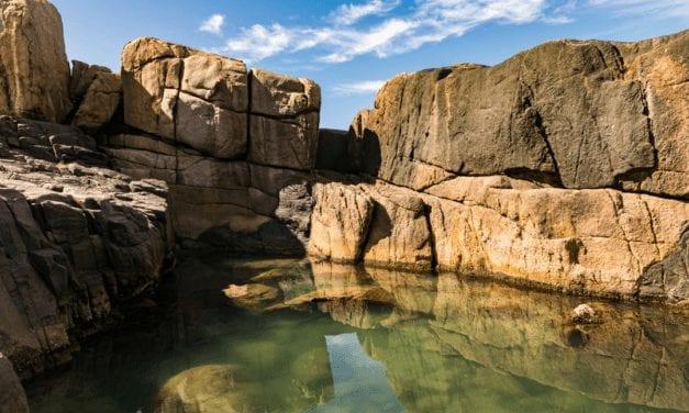 Piscinas naturais: os pequenos paraísos da Praia do Rosa